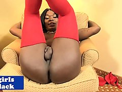 busty black tgirl in stockings wanking cock